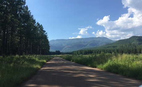 The view on your way to Bridal Veil Falls in Sabie